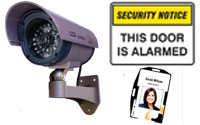 Workplace Security