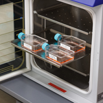 Etiquetas para identificación general en laboratorios