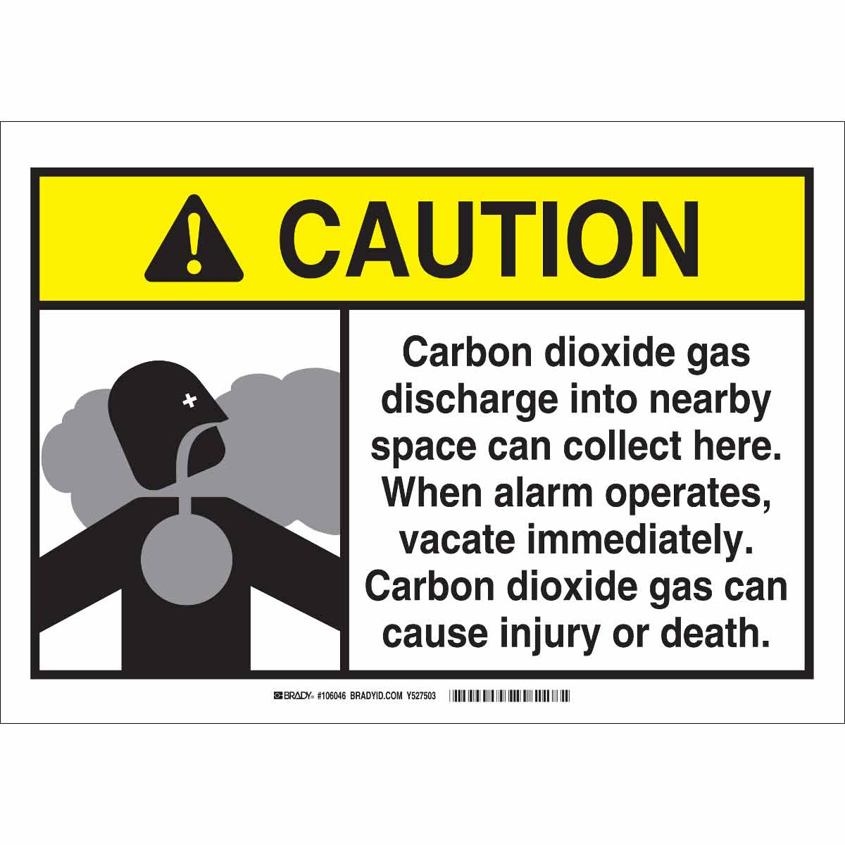 carbon dioxide gas Carbon dioxide is a colourless, odorless gas when inhaled at concentrations much higher than usual atmospheric levels, it can produce a sour taste in the mouth and a stinging sensation in the nose and throat.